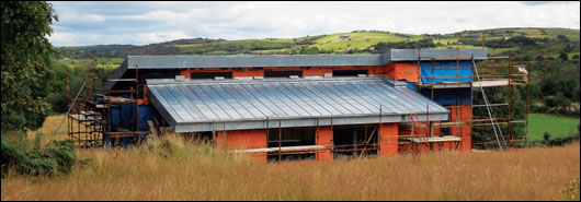Natural zinc roofing